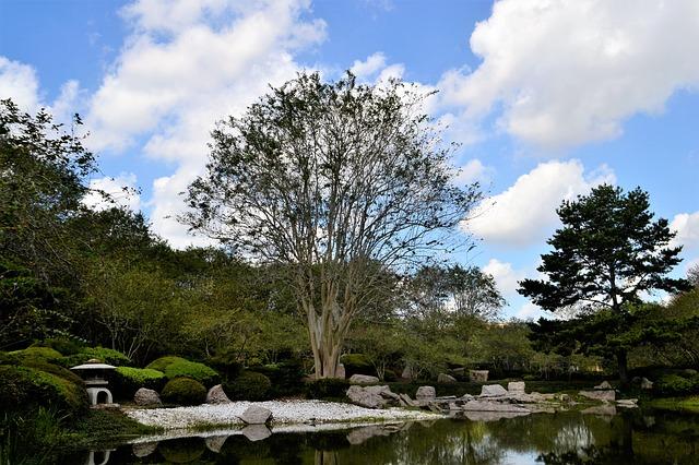 giardino giapponese, houston, texas