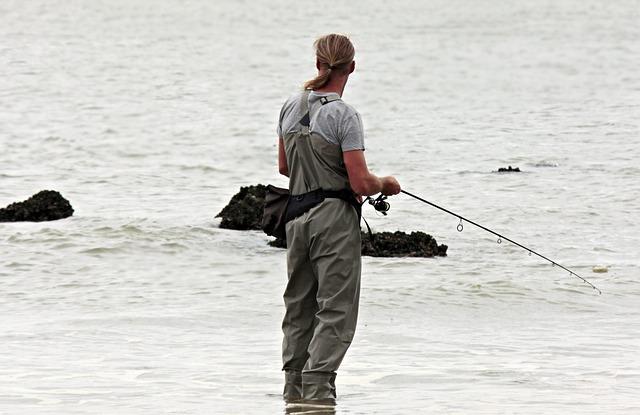 pescatore, di pesce, mare del nord